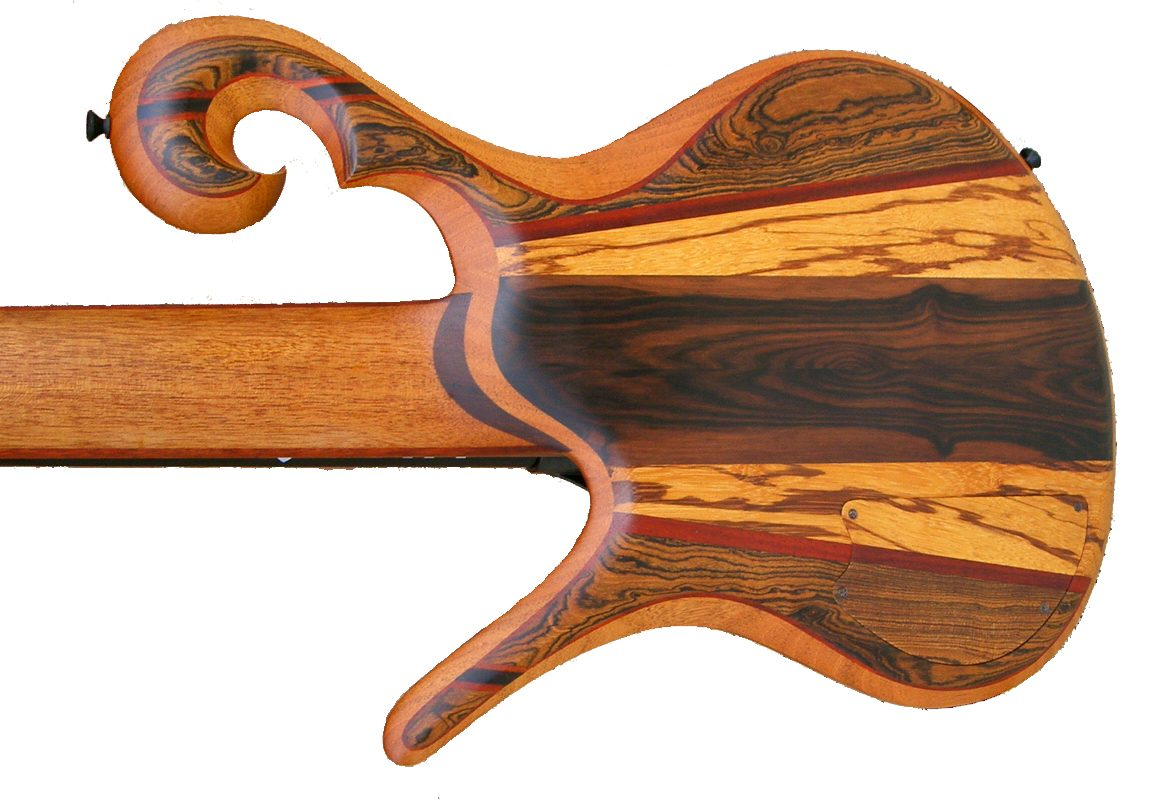 Carl Thompson 5 string fretless (retro)